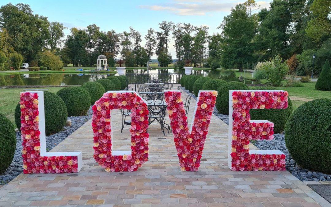 E&Y : Mariage «plu(s)vieux» mariage heureux !